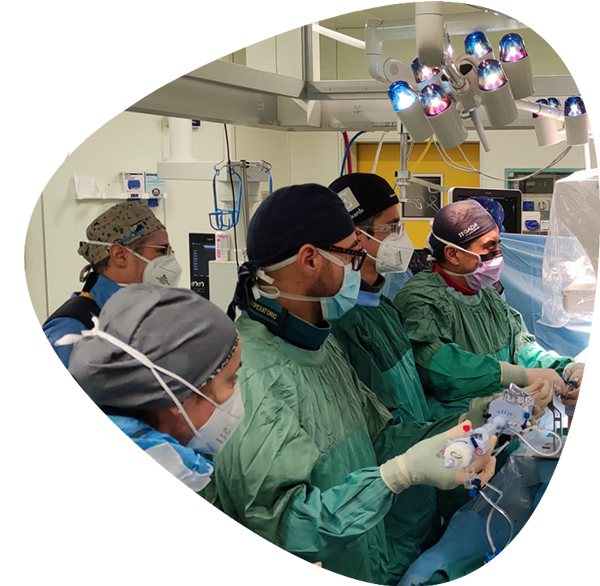 https://www.minicardiacsurgery-univpm-research.com/wp-content/uploads/2021/03/SURGICAL-HYBRID-AND-TRANS-CATHETER-ACTIVITY-new.png